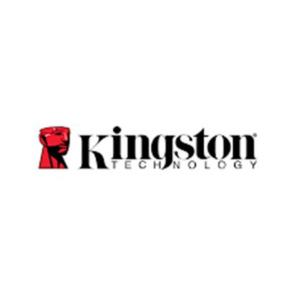 Üreticinin resmi Kingtsone