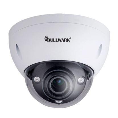 Bullwark BLW-IDM8300-SWE